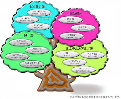 納豆の画像 p1_11